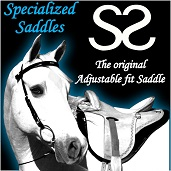 Specialized_Saddles_171